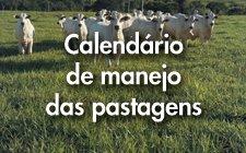 Calendário Manejo de Pastagens