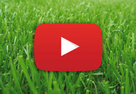 Barenbrug Video